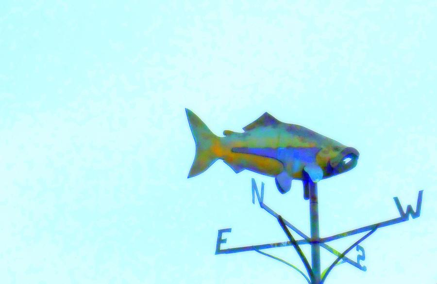 Fish Photograph - Fishing In Vane by Randall Weidner