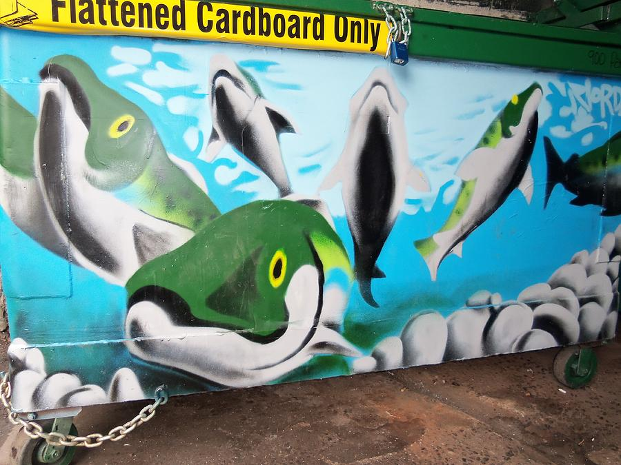 Painted Fish Photograph - Fishy Dumpster by Randall Weidner