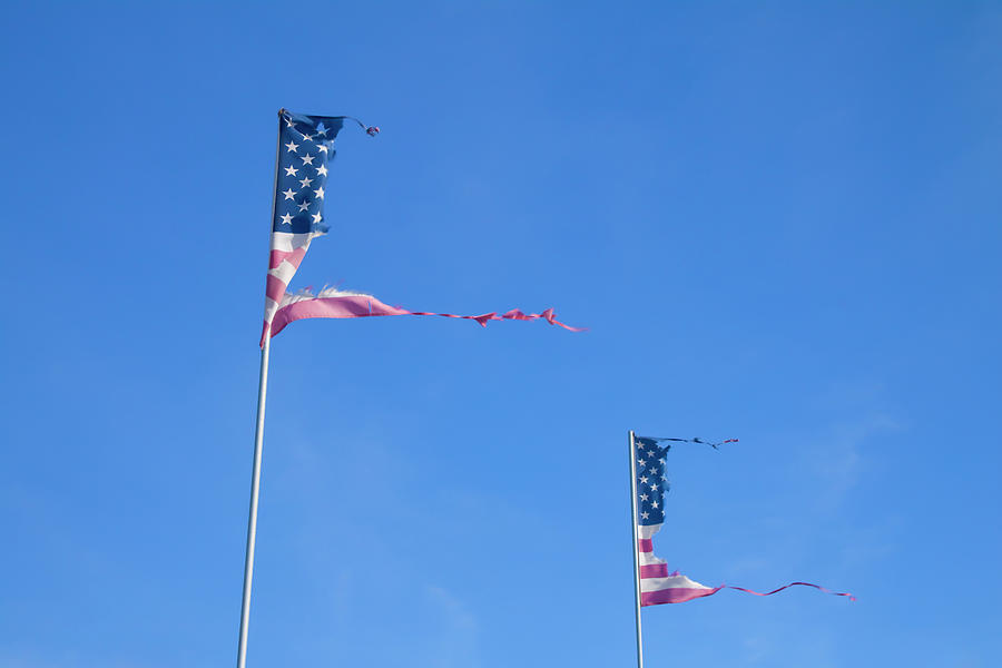 Horizontal Photograph - Flags by Phil Hill