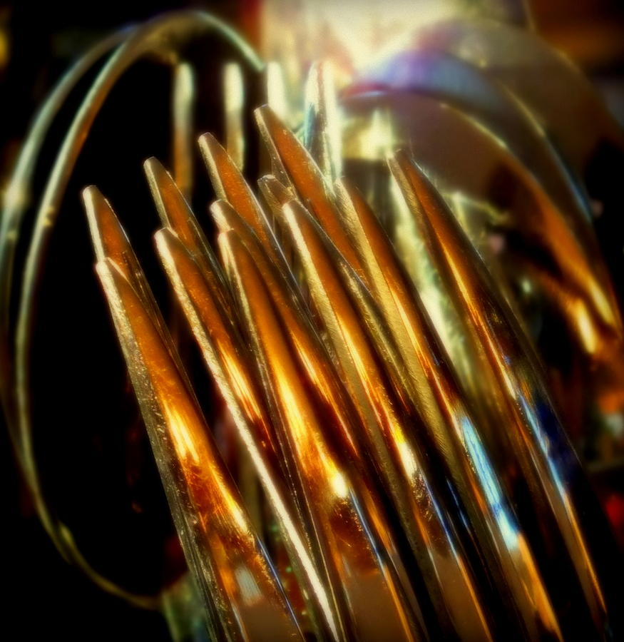 Abstracts Photograph - Flames Of Bronze by Karen Wiles