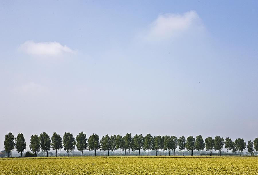 Belgium Photograph - Flemish Landscape by Frits Selier
