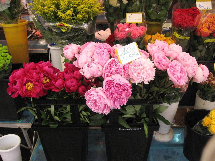 Nice Photograph - Fleurs Dans La Marche Du Nice by Sarah Foley