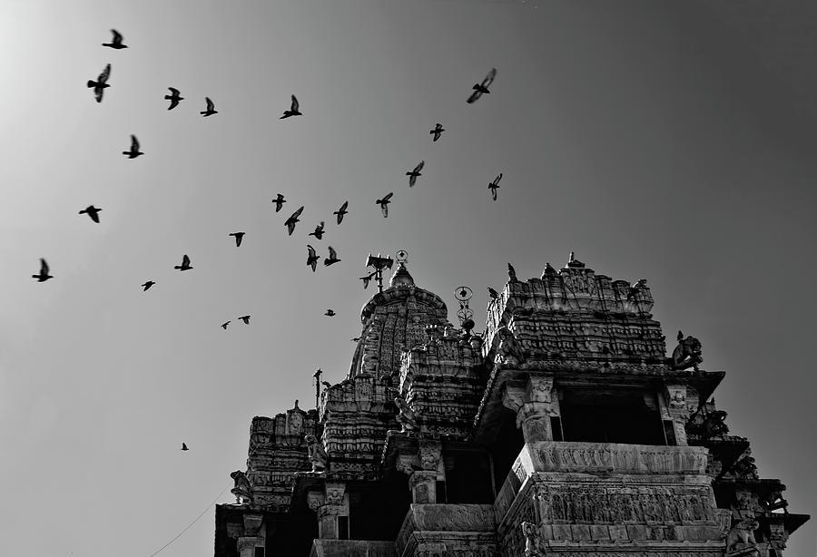 Horizontal Photograph - Flight Of Birds Above Jadgish Temple by Prashanth Naik