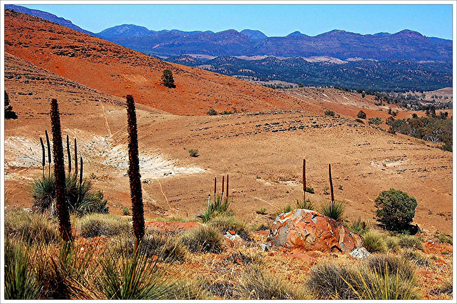 Landscape Photograph - Flinders Ranges Hucks Lookout by Patricia Tapping
