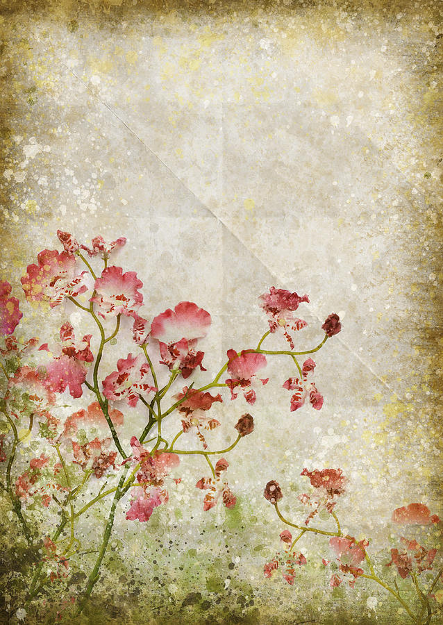 Abstract Photograph - Floral Pattern by Setsiri Silapasuwanchai