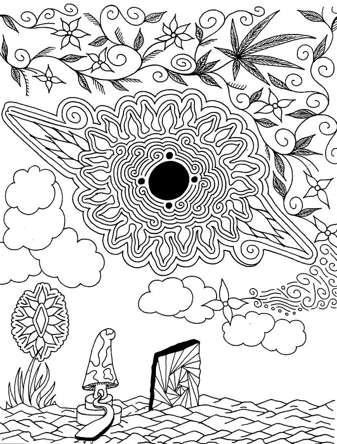Drawing Drawing - Floral Sun by Andrew Padula