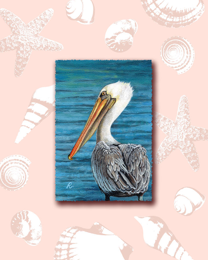 Pelican Digital Art - Florida Pelican With Seashell Border by Peggy Dreher