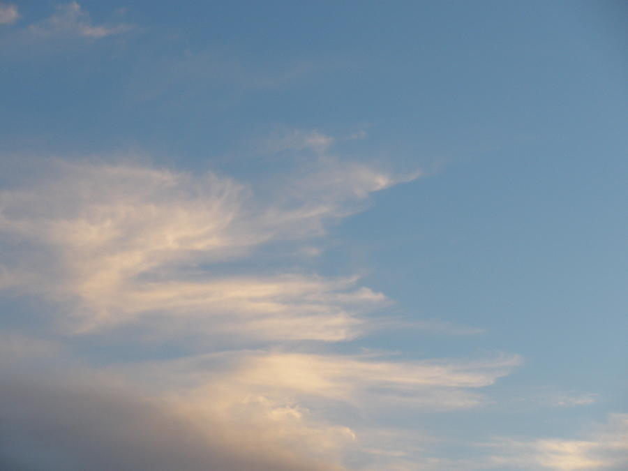Florida Photograph - Florida Sky I by Suzanne Fenster