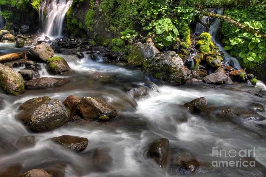Nature Photograph - Flow by Tad Kanazaki