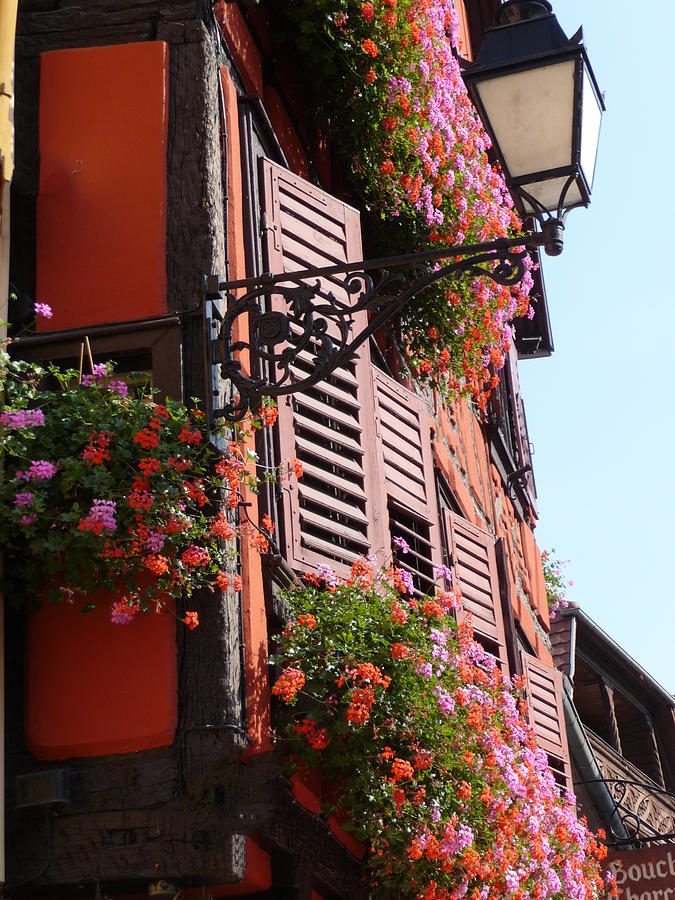 Alsace Photograph - Flower Boxes And Shutters In Alsace by Christopher Mullard