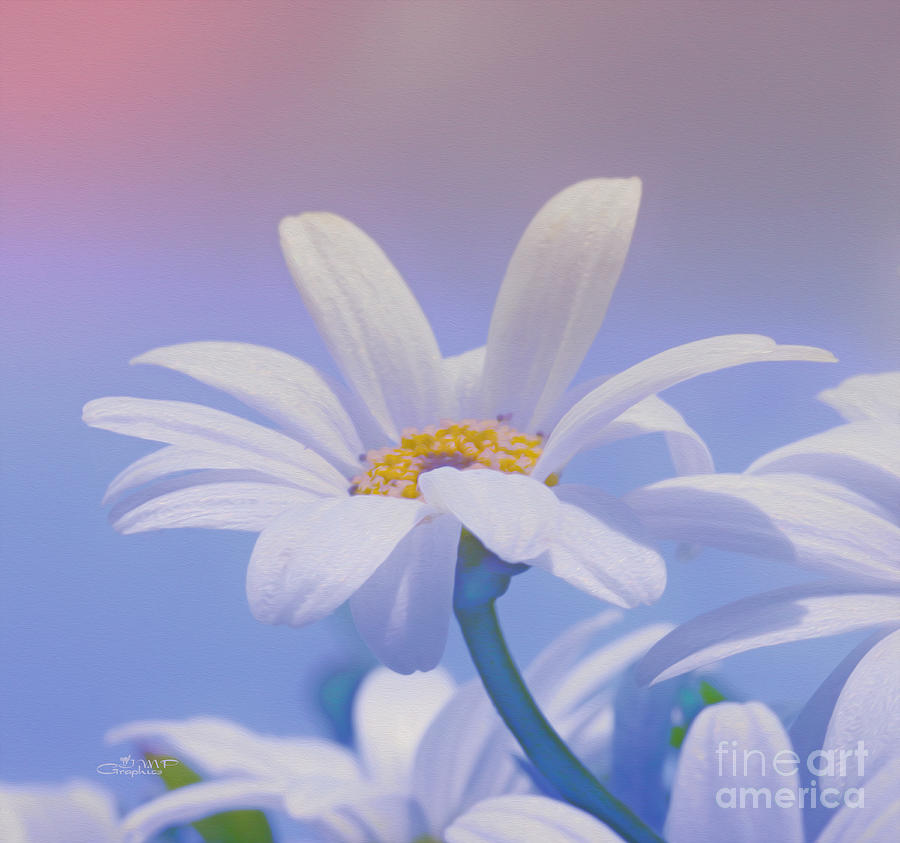Photo Photograph - Flower For You by Jutta Maria Pusl