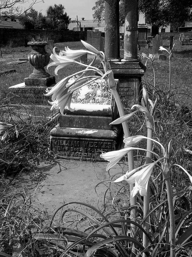 Graveyards Photograph - Flower Old Grave by Floyd Smith