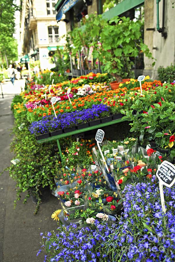 Flower Photograph - Flower Stand In Paris by Elena Elisseeva