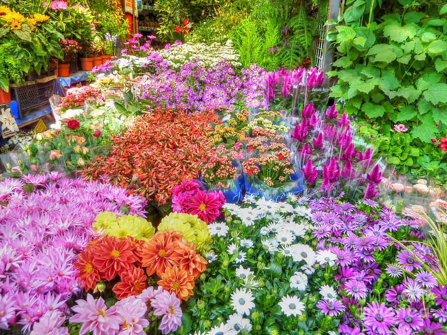 Flowers Photograph - Flowers At Market by Michael Garyet