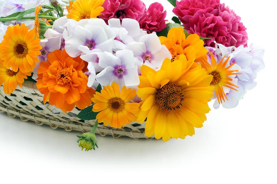 Rose Photograph - Flowers in a basket postcard by Aleksandr Volkov