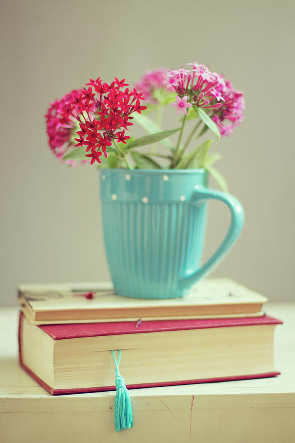 flowers in blue cup on two books photograph by copyright anna nemoy