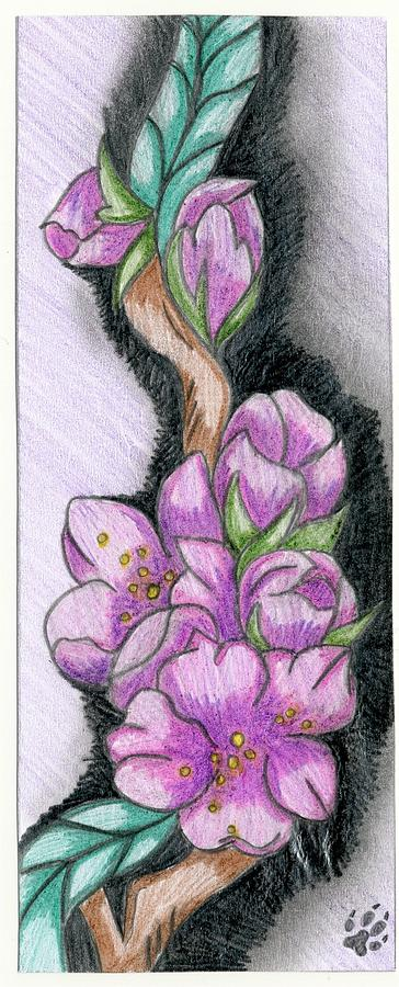 Flowers Drawing - Flowers by Kaitlyn Cappucci
