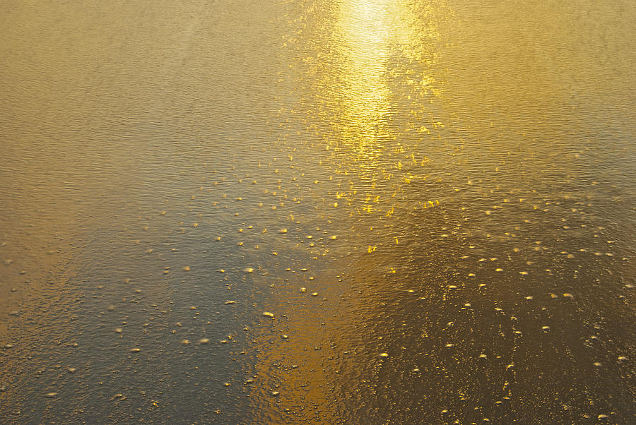 Abstract Photograph - Flowing Gold 7646 by Michael Peychich