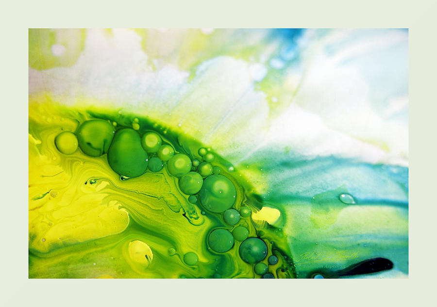 Action Painting Photograph - Fluidism Aspect 35 Frame by Robert Kernodle