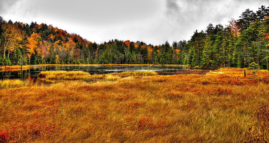 Adirondack's Photograph - Fly Pond On Rondaxe Road by David Patterson