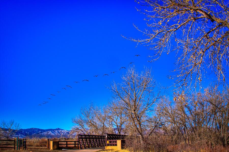 Denver Photograph - Flying Over South Platte Park by David Patterson