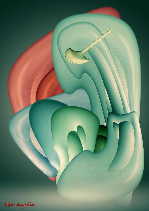 Tatar Augustin Digital Art - Foetus by Augustin  Tatar