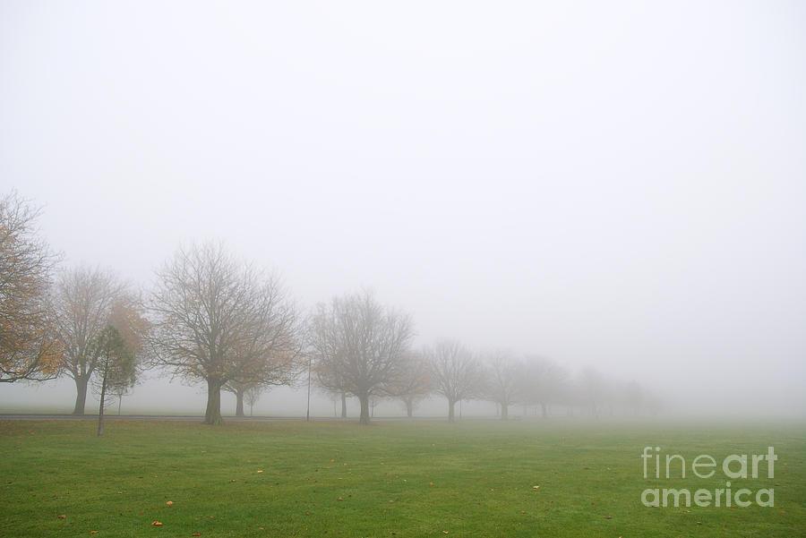 Fog Photograph - Fog by Boris Suntsov