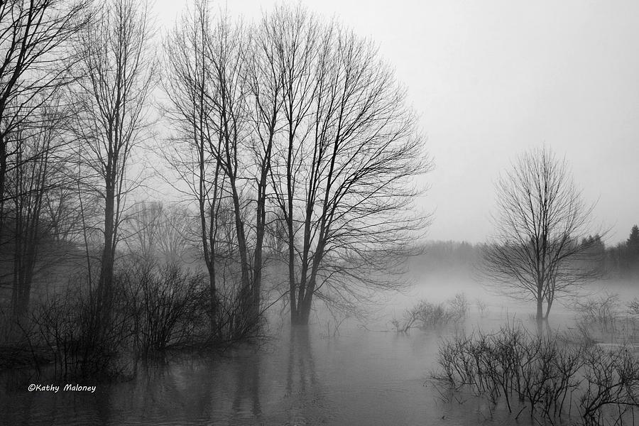 Foggy Day by Kathy Maloney