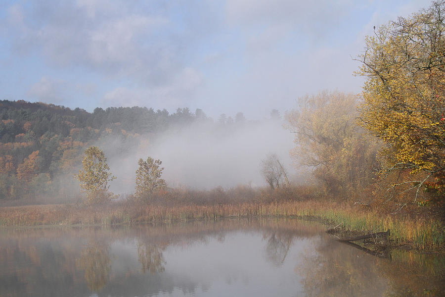 Fog Photograph - Foggy Morning  by Doris Potter