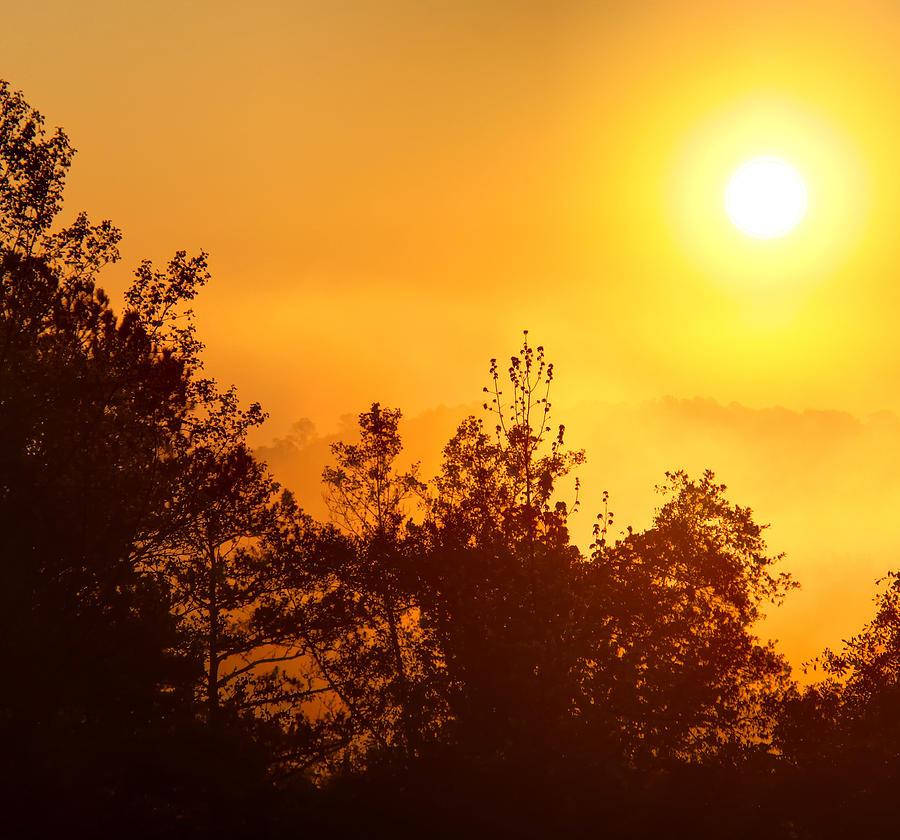 Foggy morning sunrise photograph by joe myeress for Morning sunrise images