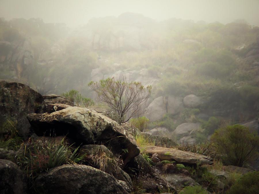 Horizontal Photograph - Foggy by Pablo Chamorro Photography