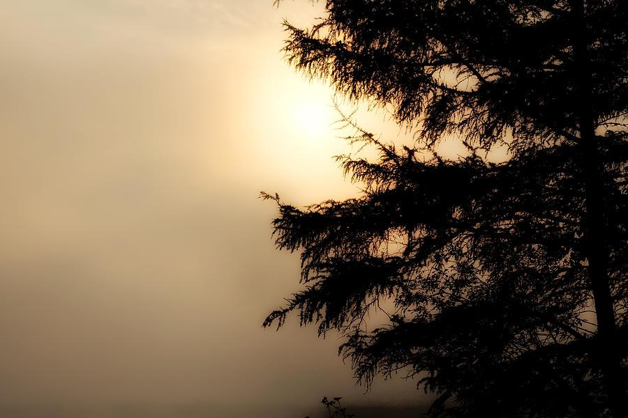 Fog Photograph - Foggy Start by Gary Smith