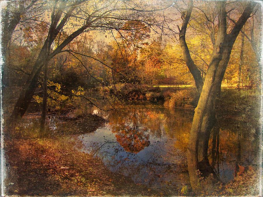 Foliage Photograph - Foliage Canvas by John Rivera