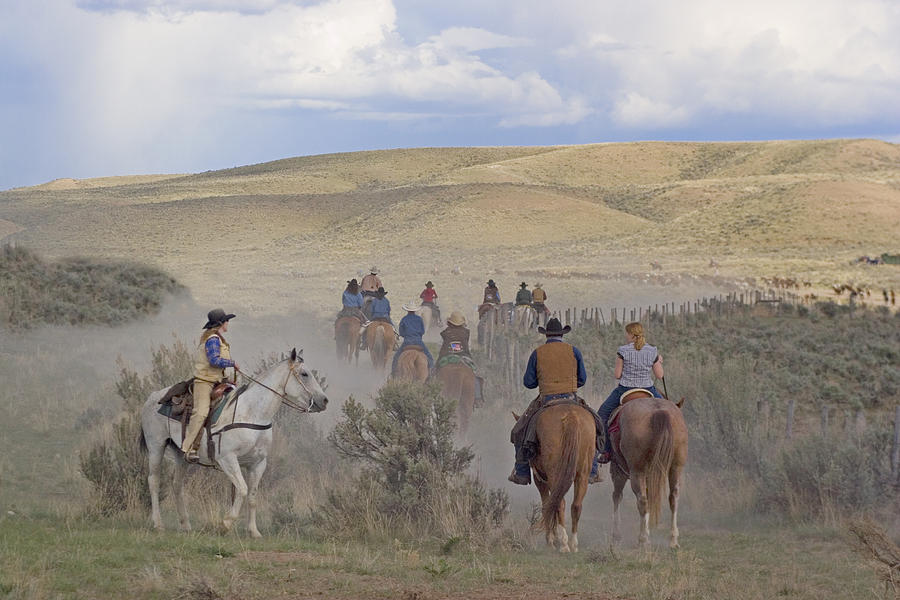 Cowboys Photograph - Following The Herd by Judy Deist