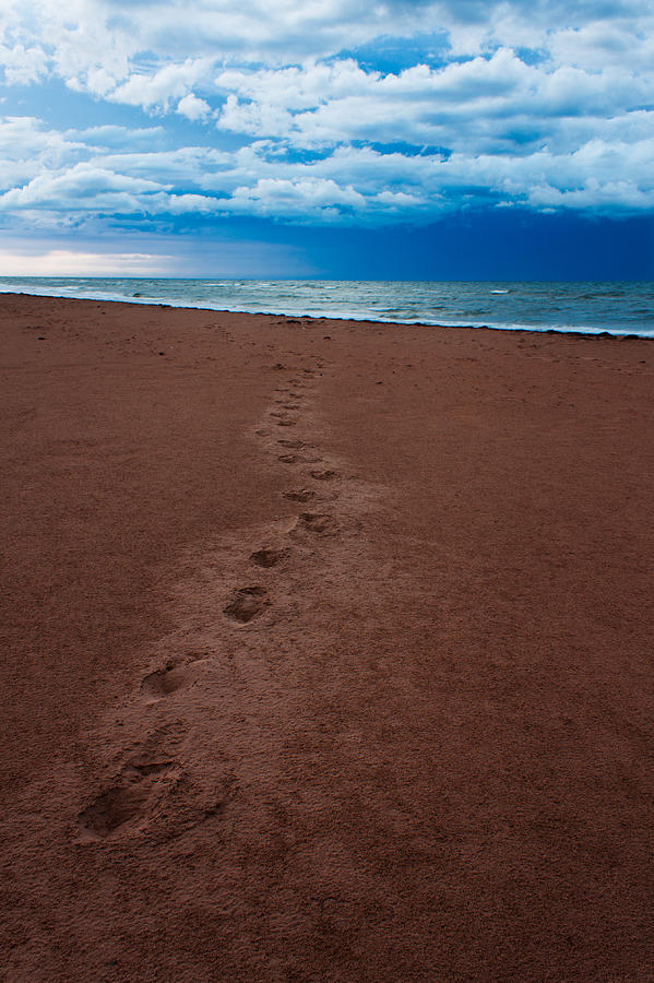 Scenic Photograph - Foot Prints To The Sea by Matt Dobson