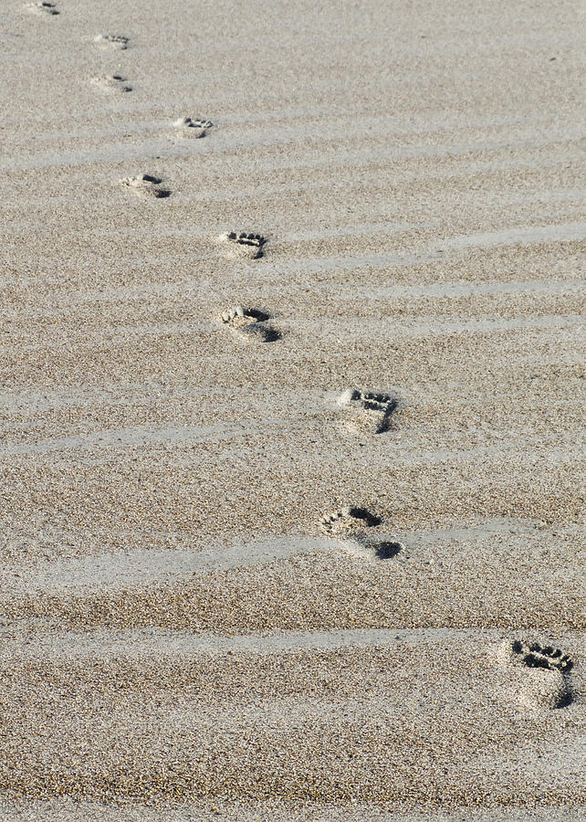 Image result for footprints on the sand