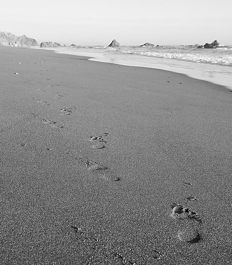 Footprints by Pam  Holdsworth