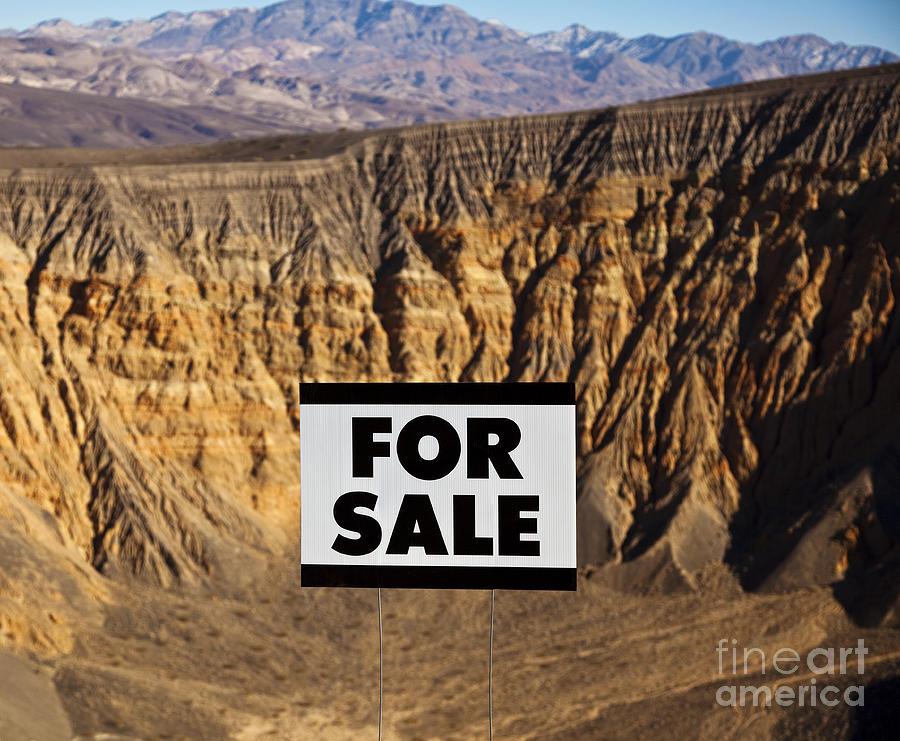 Arid Photograph - For Sale Sign In Desert Landscape by David Buffington