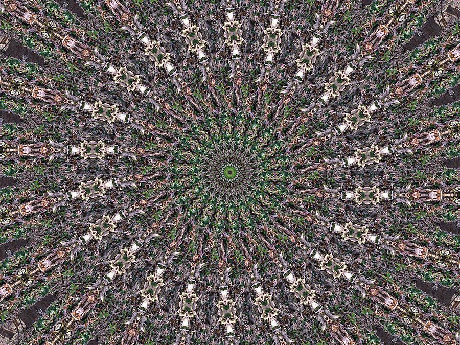 Kaleidoscope Digital Art - Forest Kaleidoscope 2 by Rhonda Barrett