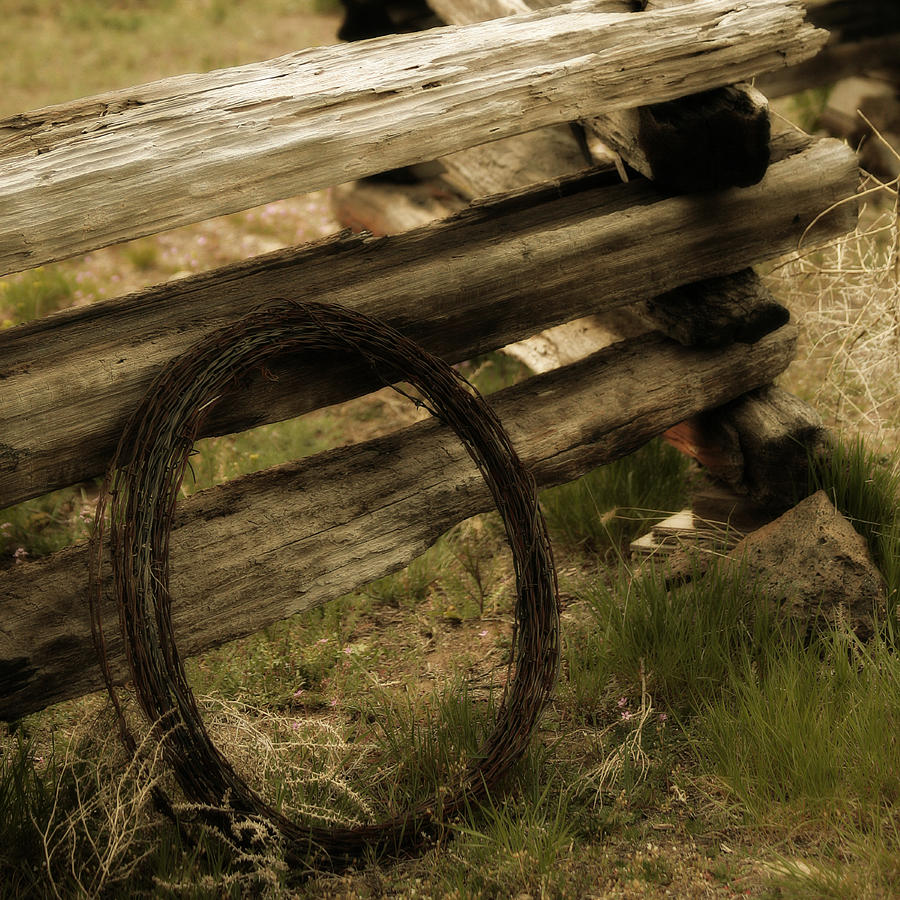 Barbed Wire Photograph - Forgotten by Bonnie Bruno