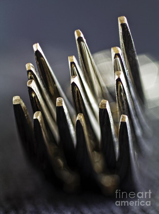 Forks Photograph - Fork-it by Elena Nosyreva