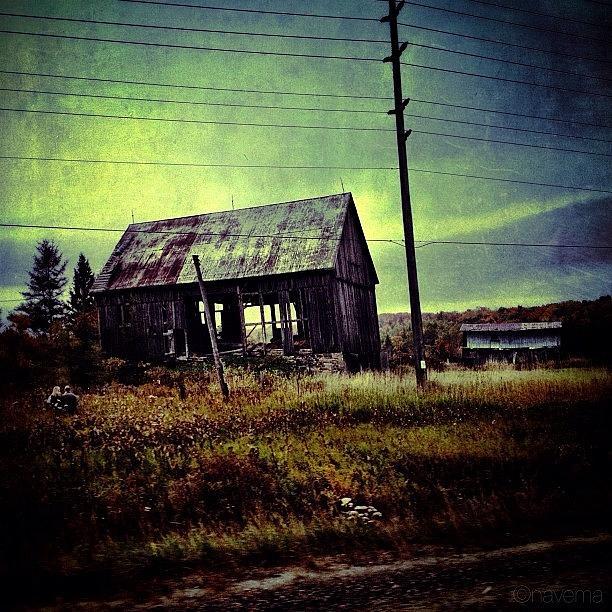 Barn Photograph - Forlorn by Natasha Marco