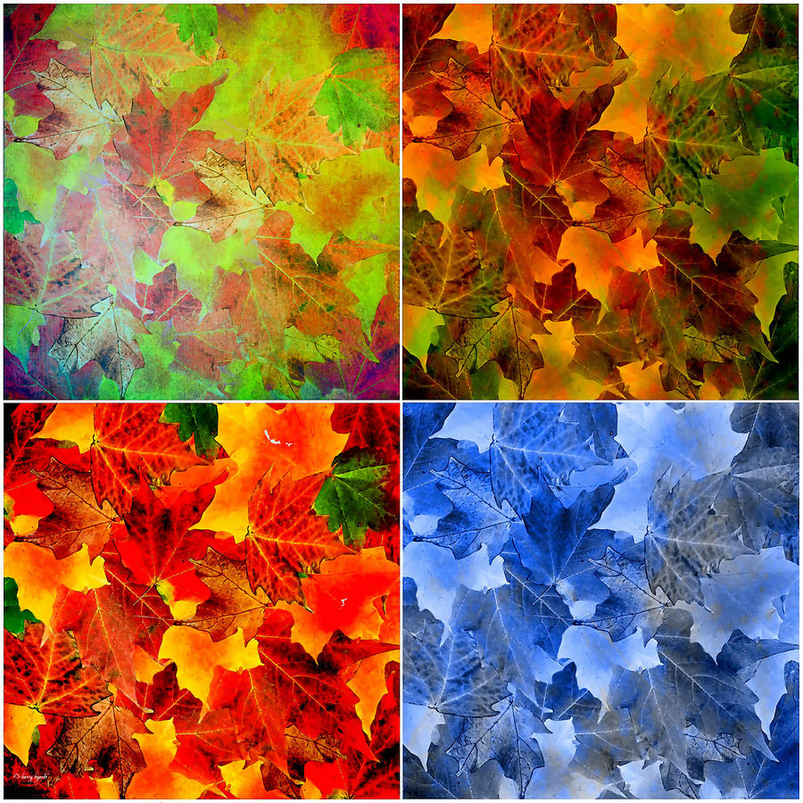 four seasons in abstract digital art by lourry legarde