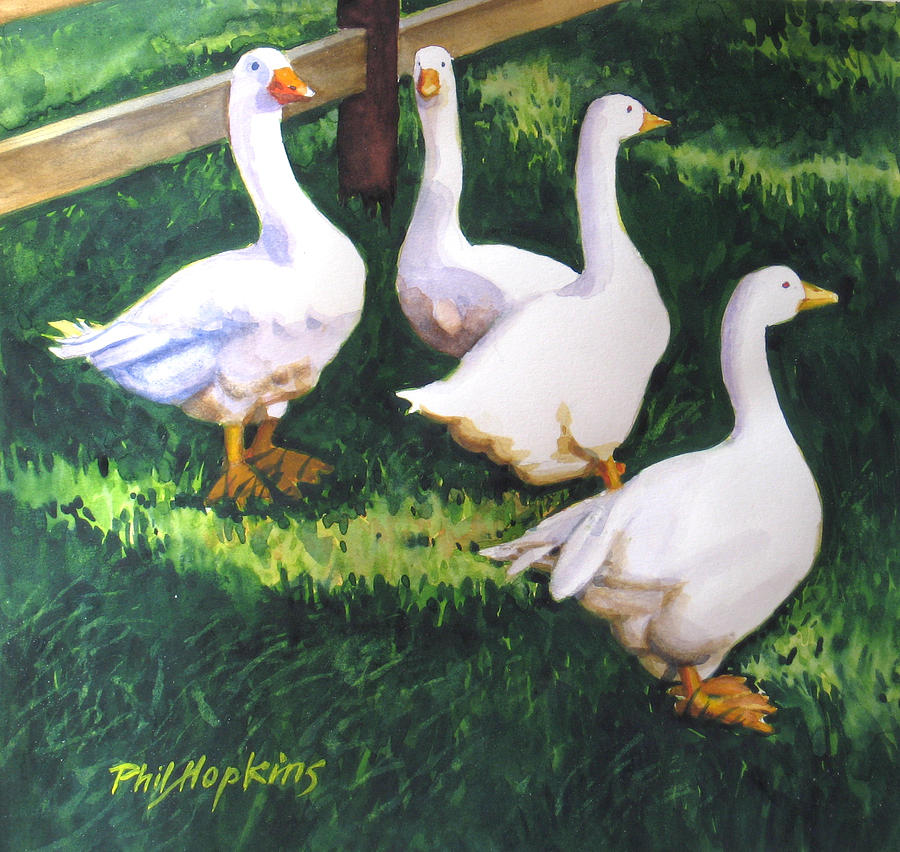 Geese Painting - Four White Geese  by Phil Hopkins