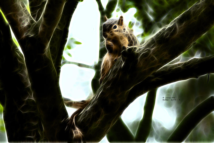Fractal Digital Art - Fractal - Thumb Sucker - Robbie The Squirrel - 8574 by James Ahn