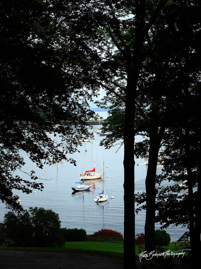 Landscape Photograph - Framed In Harbor by Ruth Bodycott