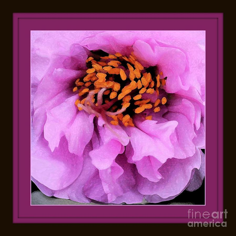 Purple Photograph - Framed In Purple - Abstract Floral by Carol Groenen