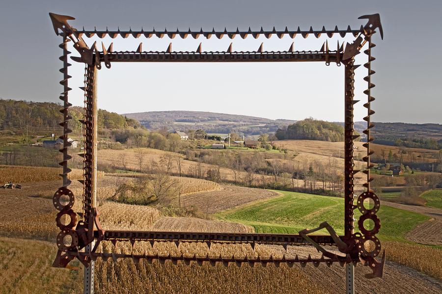 Fields Photograph - Framed by Wayne Stabnaw