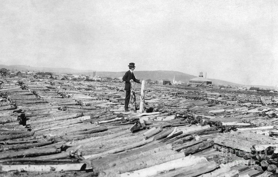1900 Photograph - Frank G. Carpenter (1855-1924) by Granger