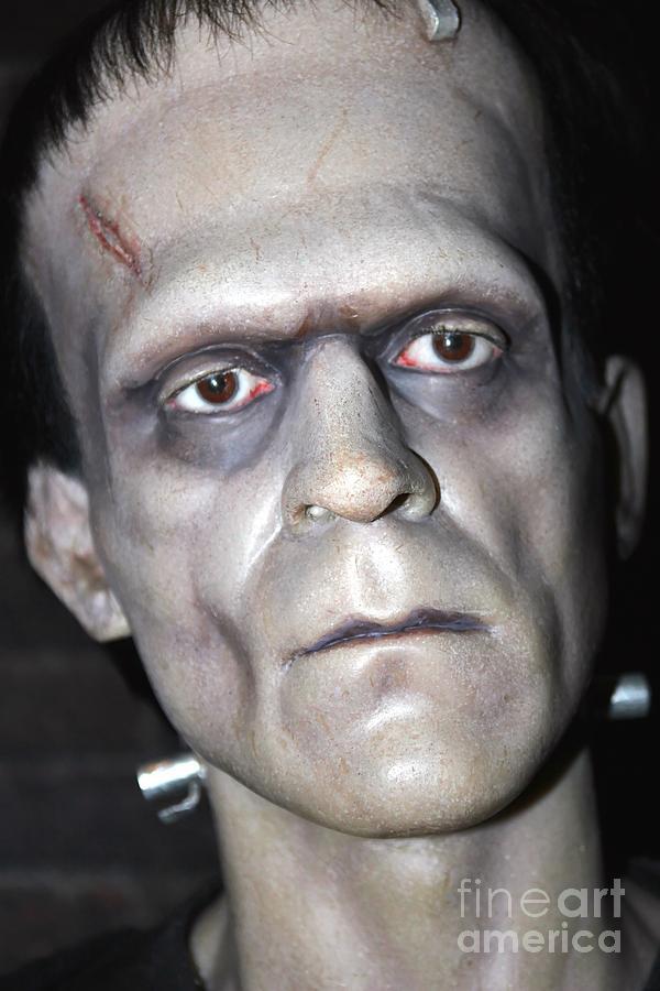 Frankenstein's Monster Photograph - Frankensteins Monster by Sophie Vigneault